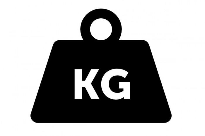 0.49KG